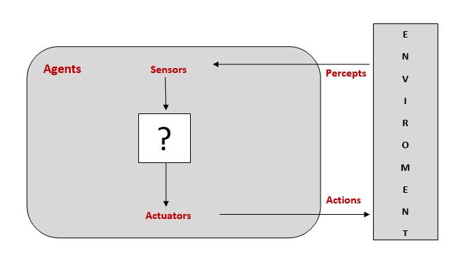 Diagrammatic Representation of an Agent