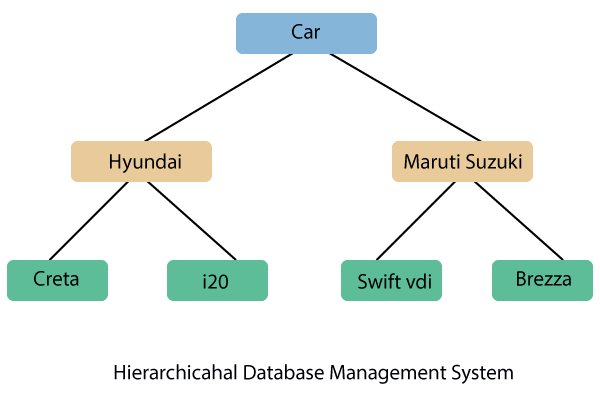 Hierarchical Database Management system