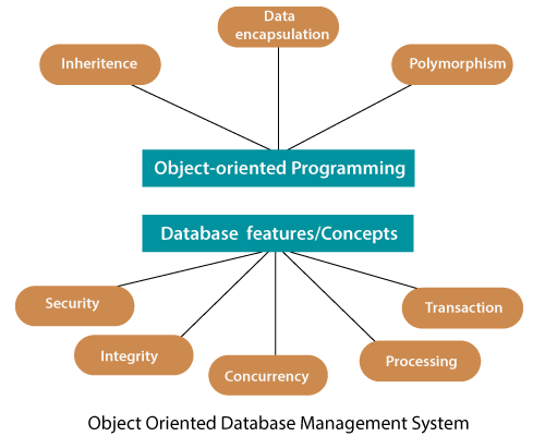 Object-Oriented Database Management system