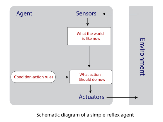 Schematic Diagram of a Simple Reflex agent