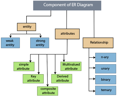 Components of an ER Diagram