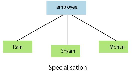 DBMS Specialization