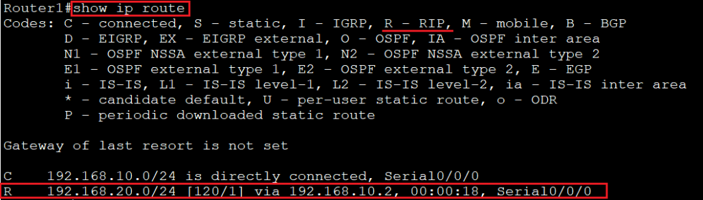Routing Information Protocol 7