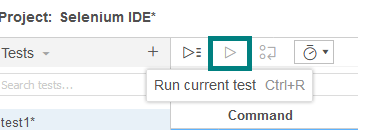run the currently selected test