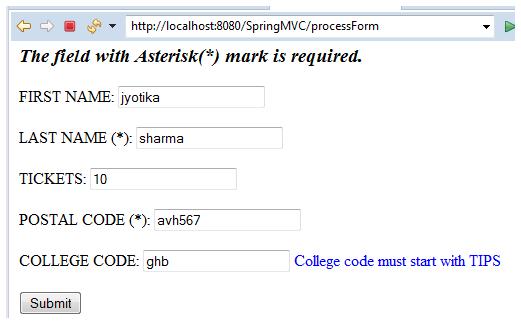 Spring MVC Form Custom Validation 3