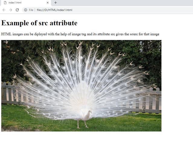 HTML5 Attribute