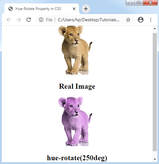 CSS Filter