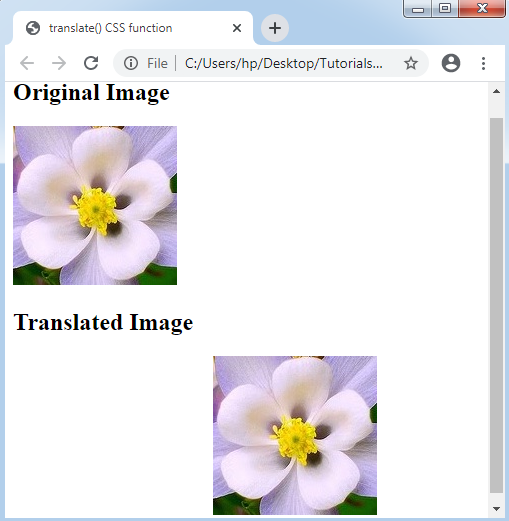 CSS translate() Function
