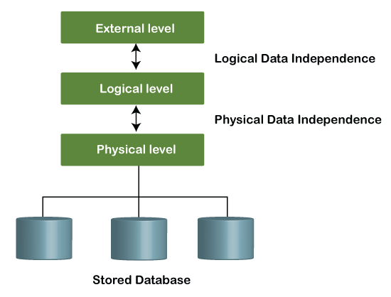 DBMS Data Independence: Logical and Physical
