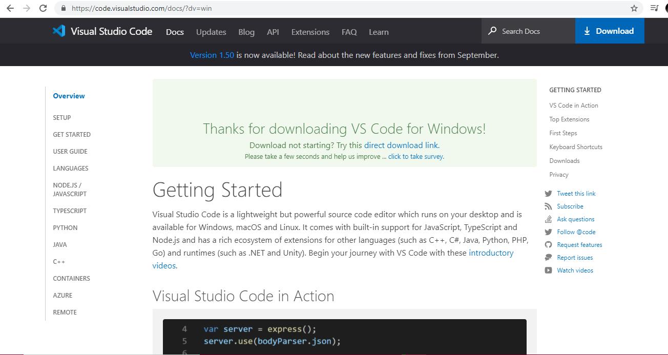 Express.js Installation