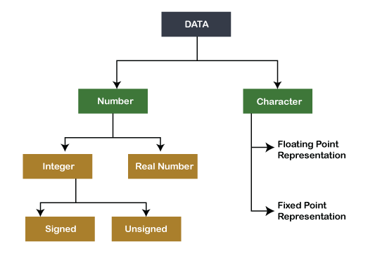 Computer Organization and Architecture Data Formats