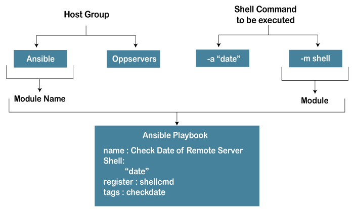 Ansible Shell
